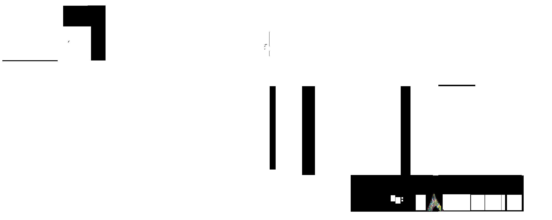 David19